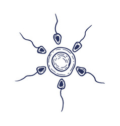 sperm and egg cell hand drawing vector image