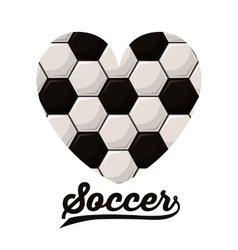 Football soccer design vector