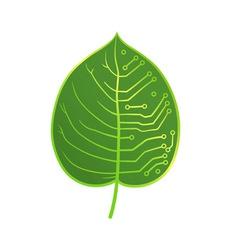 Leaf microcircuit vector