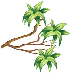 Wooden branch with green leaves vector