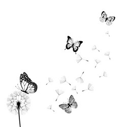 Dandelion with butterflies vector