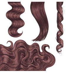 shiny long brown fair straight and wavy hair vector image