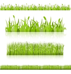 Set grass image vector