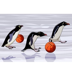 Cartoon penguins jump from basketballs vector