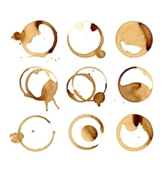 Coffee stain cup spots vector