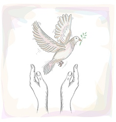 Human hands and peace dove EPS10 file vector image