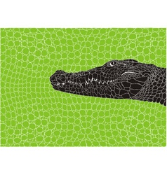 Pattern crocodile background vector