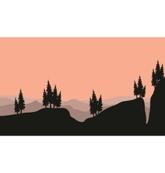 Silhouette of spruce in cliff vector