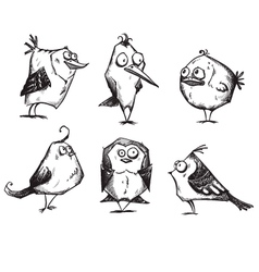 Funny cartoon birds hand drawn vector image
