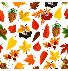Seamless autumn pattern background of fall nature vector