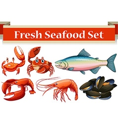 Different kind of fresh seafood vector image