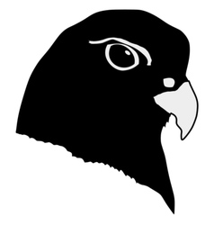 black silhouette of gyrfalcon vector image vector image