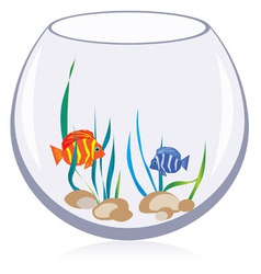 Fish aquarium vector