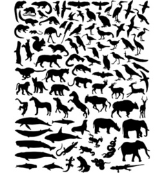 animal outlines vector image