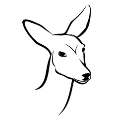 Roe head vector