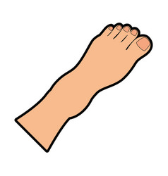 human feet isolated icon vector image