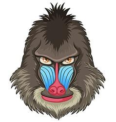 Mandrill baboon vector