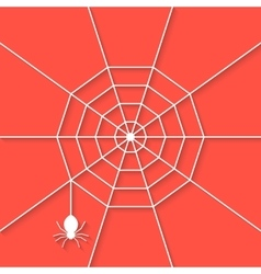 white cobweb with shadow on red background vector image