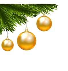 Christmas isolated branch vector