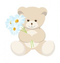 Toy bear vector