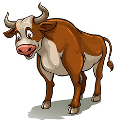 A bull vector image vector image