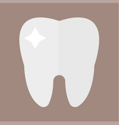 Flat health care dentist tooth icon research vector