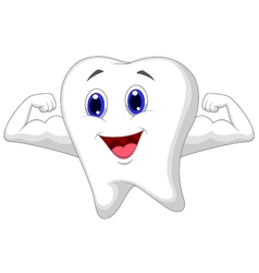 Strong tooth cartoon vector