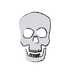 Human skull male medical biology science vector