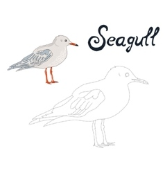 Educational game connect dots draw seagull bird vector