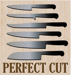 Perfect cut vector