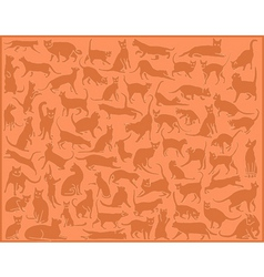 cat background vector image