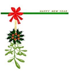 New Year Card with Mistletoe and Christmas Holly vector image