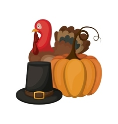 Pumpkin turkey and hat of Thanksgiving vector image