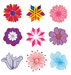 set of flowers vector image vector image