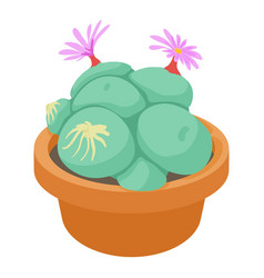 Succulent icon cartoon style vector