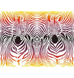 Zebra abstract pattern background vector image