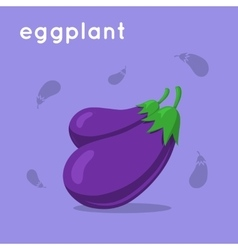 Two eggplants bunch vector