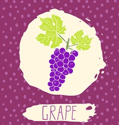 Grape hand drawn sketched fruit with leaf on vector