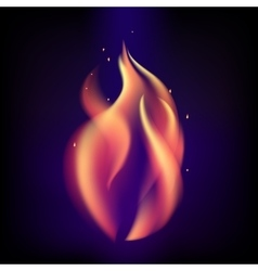 Red burning fire flame on black purple background vector