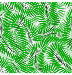 Seamless of chamaedorea leaves vector