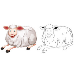 doodle animal character for sheep vector image vector image