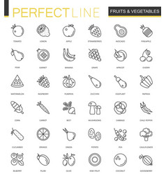 Fruits and vegetables thin line web icons set vector