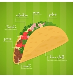 Taco isolated mexican food vector