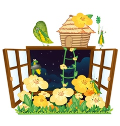 grasshopper bird house and window vector image