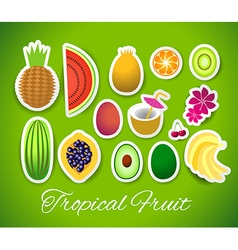Stickers tropical fruit vector