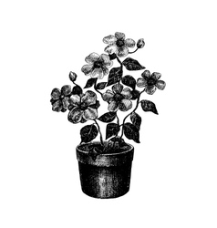 Black and white drawing of flower vector