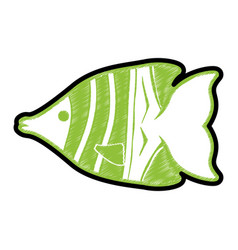 fish sea animal symbol vector image
