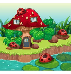 Bugs outside the mushroom house vector