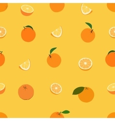 colored fruits vector image vector image