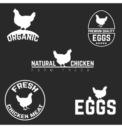 Set chicken and eggs logo emblem natural fresh vector